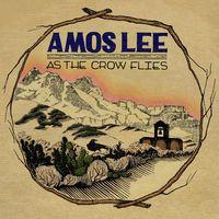 Amos Lee - AsTheCrowFlies_Art