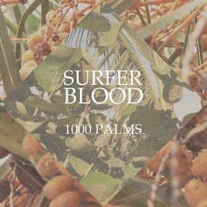 Surfer Blood: 1000 Palms