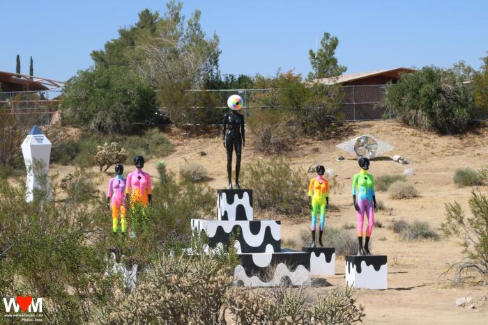 Desert Daze Art Installation