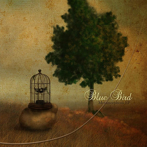 Blue Bird: Metamorphosis EP
